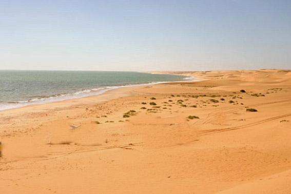 Co te mauritanie